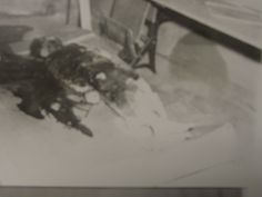 Clutter family murders crime scene photo, showing the remains of Herb Clutter Famous Murders, Murder Stories, In Cold Blood, Clutter, Serial Killers, True Crime, Gangsters, Herb, Death