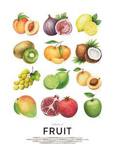 Fruit, plakat i gruppen Plakater / Størrelser / 50x70cm hos Desenio AB (8590)