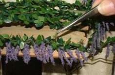 How to Make a Miniature Wisteria Vine for the Doll House