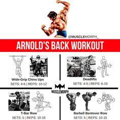 Back workout arnold schwarzenegger musclemorph https://musclemorphsupps.com