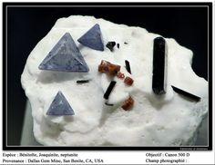 Benitoite, Neptunite, Joaquinite Dallas Gem Mine, San Benito, California, USA cabinet