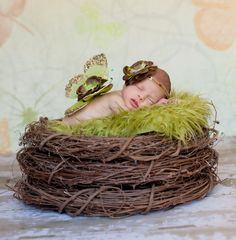 """Stack 3 twig wreaths to create a """"nest"""" look for newborn photography. Genius."""