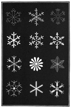 The illustrative plates from Snowflakes: a Chapter from the Book of Nature a collection of poems, extracts, anecdotes and reflections on the theme of snow and the snowflake. Snow Flake Tattoo, Christmas Cards, Christmas Decorations, Christmas Fabric, Image Theme, Collection Of Poems, Theme Noel, Unique Tattoos, Pyrography