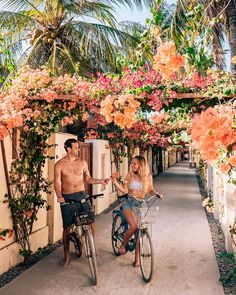 Kelapa Villa is the iconic spot to take photos on Gili T with the flowers all around you. You can walk or ride your bike there from anywhere on the island. It is located on Jl. street, north end of the Island in the center. Gili Trawangan, Island, Canning, Street, Flowers, Photos, Pictures, Islands, Home Canning