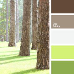 Built upon the color combination of summer. Warm shades, the color of fresh grass, and brown shades – this is only a part of the natural palette. This color scheme is suitable for decoration of a rather spacious office or a light living room. Use of these colors will be appropriate for a young lady's manicure.