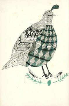 A Quail bird. kat frank