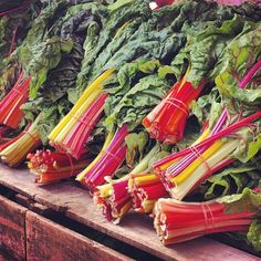 Rainbow Chard Recipes On Pinterest Swiss Chard Recipes Swiss Chard ...