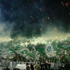 Celebrations in Colombia after Atletico Nacional won the Copa Libertadores final on Wednesday ended in violence, with three fans killed. Ultras Football, We Are Young, Teen Titans, Football Soccer, Fit, Celebrities, Photography, Club, Beautiful