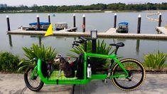BULLITT cargo bike dog carrier
