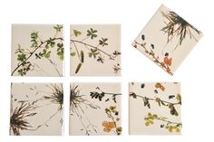 alison milner,tiles,coasters,trivets,foraging,seedheads,weeds,contemporary,graphic design,