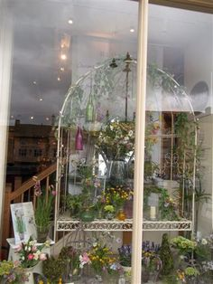 Meadow flowers window display at the Bloom shop in Stow this year