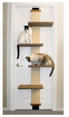 Tall Cat Perch Climbing Scratching Post Door Mounted for Kittens or Bigger Cats #PioneerPet