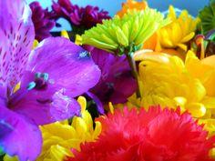 Beautiful, colorful bouquet #color #flowers