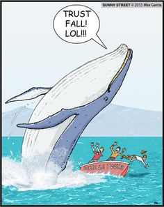 Whales trust fall.