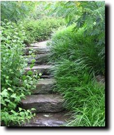 Steep Hill Landscaping; Things You Ought to Know...Good ideas...read and share.