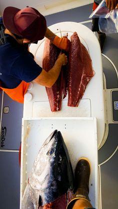 Sushi and SeaDek | SeaDek Marine Products Blog
