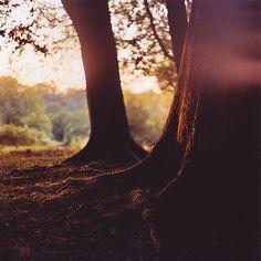 I change my mind I wanna live somewhere near a lot of nature ❤️