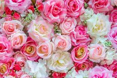 The evocative and complex aroma of Rose Essential Oil has been a favorite for centuries. Rose is comforting and calming and promotes affection and warmth. Natures Sunshine, Rose Essential Oil, Healing Oils, Best Oils, Great Gifts, Floral Wreath, Fragrance, Essentials, Perfume
