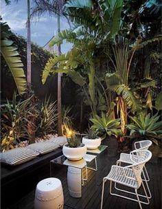 Tropical Backyard, Tropical Landscaping, Backyard Landscaping, Tropical Plants, Tropical Gardens, Backyard Ideas, Garden Ideas, Tropical Fabric, Backyard Play