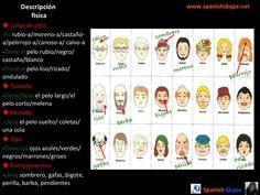 Descripción física en español