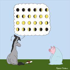 "Donkey ""Tino"" & Co. Donkey ""Tino"" has a degree in astrology by Federico Monzani"