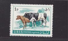 Lebanon-Cows-454-MNH