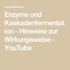 Enzyme und Kaskadenfermentation - Hinweise zur Wirkungsweise - YouTube