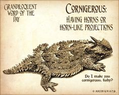 Grandiloquent Word of the Day: Cornigerous (kore•NIDGE•er•us) Adjective: -Having horns or horn-like projections. Corniculate.