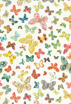 Butterfly inspiration for the nursery maybe? I love the bright colors...and of course Butterflies.