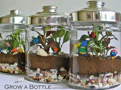 Terrarium Ideas and Inspiration {Easy DIY Ideas for Indoor Gardens - Reich Miyazaki, Indoor Garden, Outdoor Gardens, Feng Shui, Plants In Jars, Miniature Plants, Office Plants, Home Baking, Plant Decor