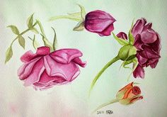 Watercolor Painting : Red roses | zeinab1361art