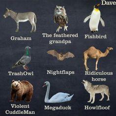 alternative names for animals