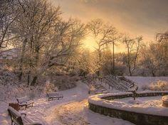 golden hour on snow