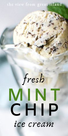 This Fresh Mint Chip Ice Cream is made with real mint leaves and dark chocolate summer eating doesn't get any better! Sorbet Ice Cream, Yogurt Ice Cream, Yummy Ice Cream, Best Homemade Ice Cream, Mint Chocolate Chip Ice Cream Recipe, Frozen Chocolate, Dark Chocolate Ice Cream, Homemade Chocolate, Fresh Mint