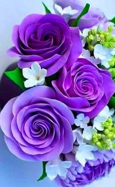 Wonderful Pictures Purple Flowers rosas moradas Ideas Purple flowers are one of the almost all stunning in addition to functional plants for the garden. Beautiful Rose Flowers, Exotic Flowers, Amazing Flowers, My Flower, Beautiful Flowers, Beautiful Flower Arrangements, Cactus Flower, Flower Beds, Beautiful Pictures