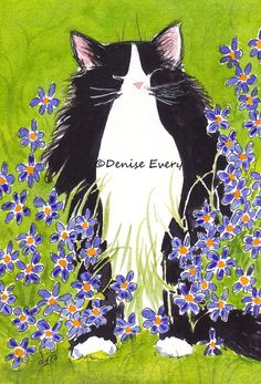 Tuxedo Maine Coon Kitty & BlueEyed Grass Flowers by DeniseEvery