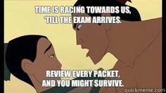 Mulan parody for AP test!
