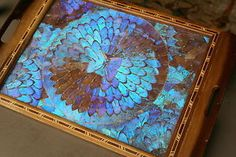 Vintage Tray with Butterfly Wings