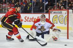 NHL Sports Betting: Calgary Flames at Florida Panthers, Vegas Odds and Bet on Sports, Nov 10th 2015