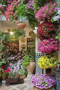 1000 images about jardines on pinterest ideas para for 1000 ideas para el jardin