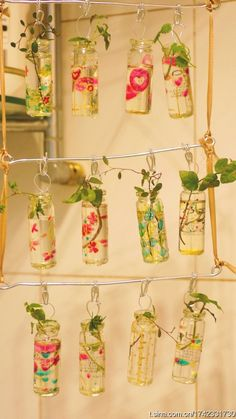 Plants at home - Plantas al interior del hogar