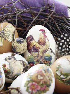 Chicken decoration to Ostern3