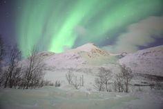 Aurora Boreal en el Polo Norte