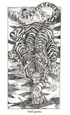 Fearful Symmetry-Graphite Print sold by Spira Mirabilis: Art of Balaa. Shop more products from Spira Mirabilis: Art of Balaa on Storenvy, the home of independent small businesses all over the world. Tiger Tattoo Sleeve, Back Tattoo, Sleeve Tattoos, Hand Tattoos, Tiger Tattoo Design, Tattoo Designs, Animal Sketches, Animal Drawings, Tattoo Sketches