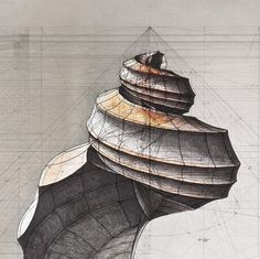 """The """"Golden Ratio Coloring Book,"""" created by Venezuelan architect and illustrator Rafael Araujo, is a remarkable representation of both the artistic and scientific aspects of the natural world. Each illustration. Geometric Art, Design, Illustration, Coloring Books, Art, Fibonacci, How To Draw Hands, Amazing Drawings, Golden Ratio"""
