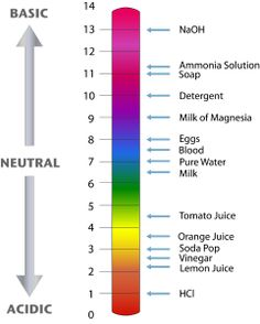 GCSE Chemistry: Charting the PH Scale