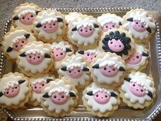 Little Lambs   Cookie Connection