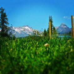 This Artsy Life: Weekend 31[ Work + 5 Places I'd Rather Be ] - artsy forager | Polebridge, MT outside Glacier National Park #travel #mountains #Glacier