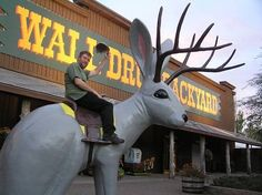 quirky roadside attractions--hmmmmm i think I've been there