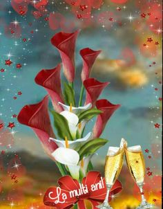 Happy Birthday, Humor, Plants, Happy Brithday, Urari La Multi Ani, Humour, Happy Birthday Funny, Funny Photos, Plant
